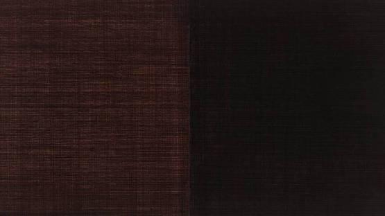 Alan Green - 1-2 Red Black (detail), photo credits tateorg