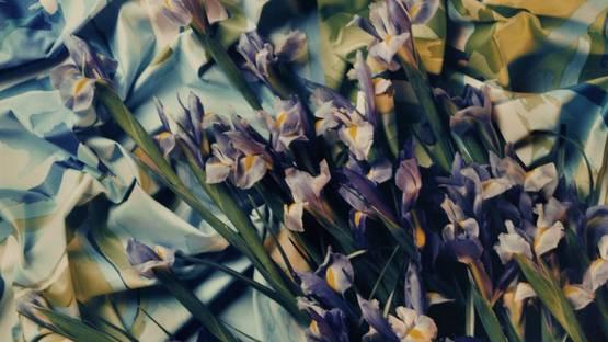 Andreas Mahl - Iris, 1996 (detail)