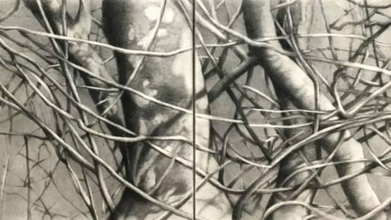 Catherine Ruane - Sherwood Forest I-III, 2018 (detail)