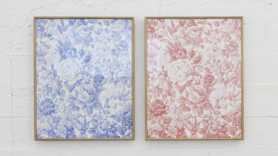 Daan van Golden - Apperception - solo show at Wiels, Brussels - 2012 - installation view