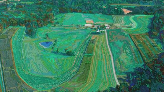 Deborah Claxton - Farm from a Helicopter (detail) - 2005