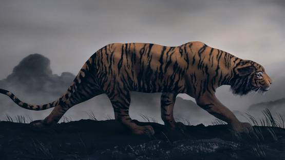 Didier Massard - The Tiger (detail), 2013, photo credits - artist