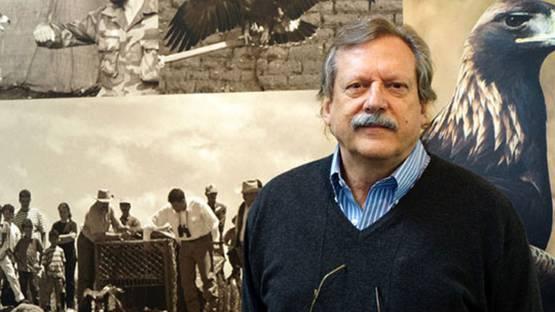 Fulvio Eccardi - profile