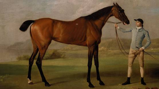 George Stubbs - Molly Long-Legs with her Jockey (detail), 1761–62, photo via wikipedia org