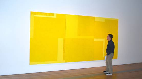 Installation at the Grand Rapids Art Museum, in Gand Rapids, MI, 2010