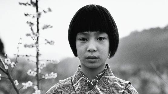 Issei Suda - Ume-Matsuri, Ogose, Saitama (Fushikaden), 1976 (detail) - image via sothebyscom