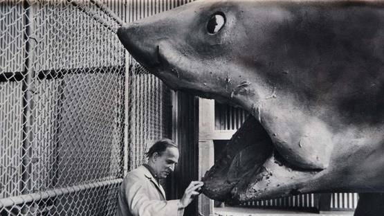 John Bryson - Ingmar Bergman and the shark from Jaws, 1975 - Image via aphelis
