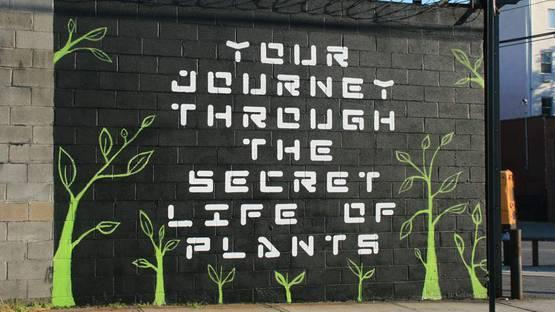 John Fekner - Journey through the Secret Life of Plants, NY, photo via adhockart org