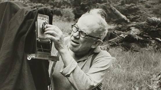 Josef Sudek in Mionsi Forest, 1970