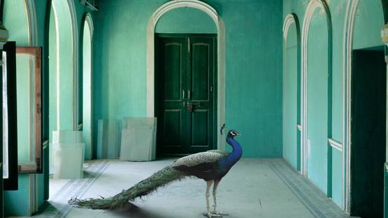 Karen Knorr - The Queens Room, detail - image courtesy of the artist