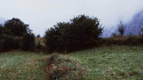 Luis Palma - No Man's Land (detail), 2001 - image via veritasleiloescom