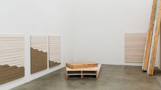 Luke Diiorio Installation View, 2014 - Copyright Anat Ebgi