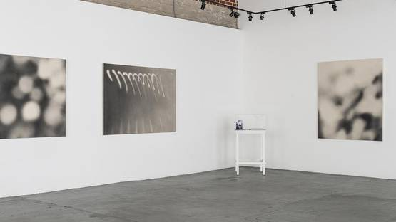 Rachel Roske - Koi No Yokan II - 2014 - group show at 101-Exhibit - installation view