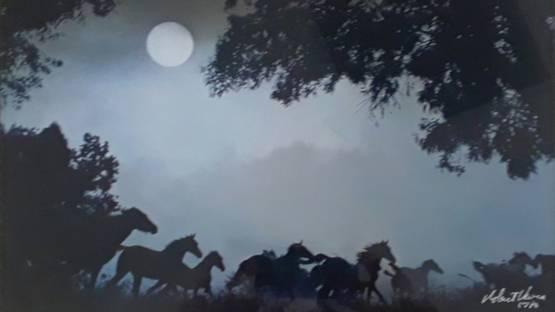 Robert Vavra - Thunder by Moonlight, 1978 (detail)