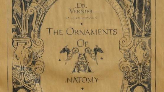 Robert Kuśmirowski - The Ornaments of Anatomy, ca 2000 (detail)