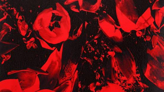 Ruperto Cabrera - Flowers in Black and Red, 2005 (detail)