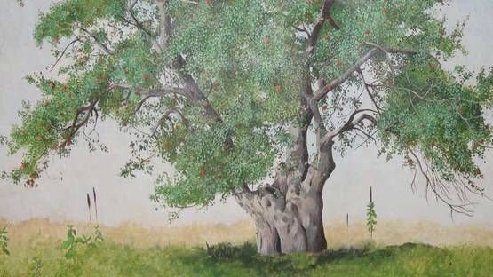 Shirley D. Erickson - The Old Apple Tree