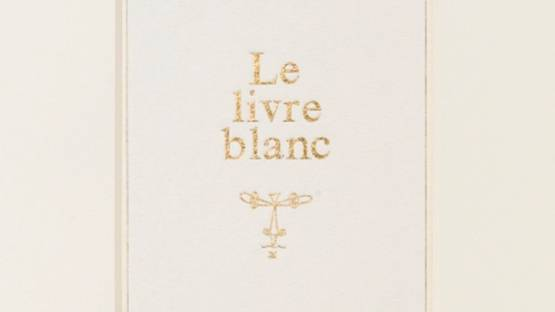 Steve Wolfe - Untitled (Study for Le Livre Blanc) - detail - image via sothebyscom