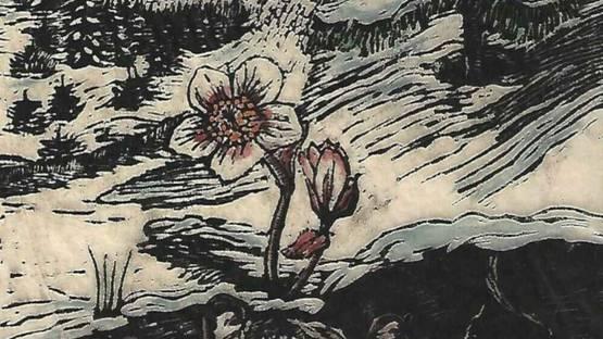 Thea Schanzenbach - untitled, 1927 (detail)