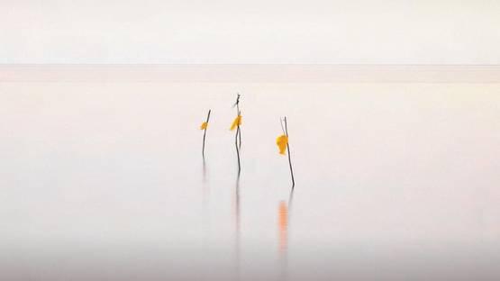 Uwe Langmann - Summer wind Haiku (Detail), 2013