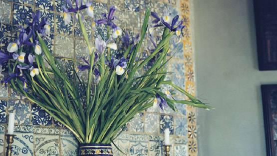 Yto Barrada - Irises on the Mantel (detail), 2009-2010, photo credits of the artist