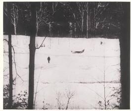 Peter Doig-Almost Grown-2001.jpg