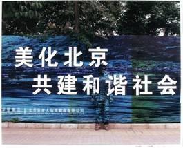 Liu Bolin - Camouflage, 2007
