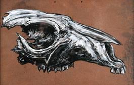 ROA - Red Kangaroo Skull, 2011