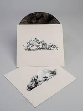 ROA - Year of the Rabbit, 2011