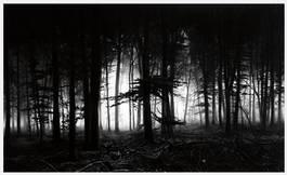 Robert Longo - Forest of Doxa, 2014