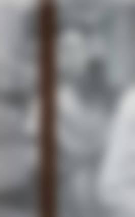 Gregor Hildebrandt-Three Shadows - Part II, Bauhaus-2010.jpg