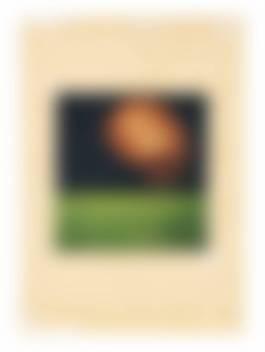 Claudio Parmiggiani-Untitled-1965.jpg