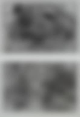 Zoe Leonard-Two works: (i) Nest no. 1; (ii) Nest-1997.jpg