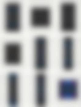 Ten Screenprints Portfolio: Nine Plates