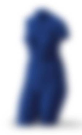 Yves Klein - Venus Bleue (S 41), 1962