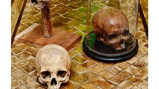 'Skull Show'