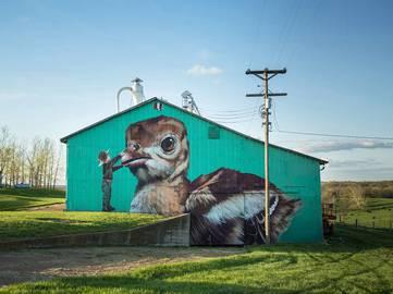 Telmo Miel - Jurassic Turkey, Missouri USA - 2015 (photo Selina Miles)