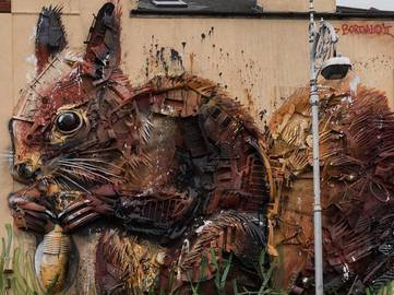 bordalo-red-squirel-1