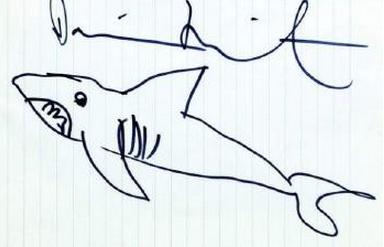 Shark Drawing Widewalls