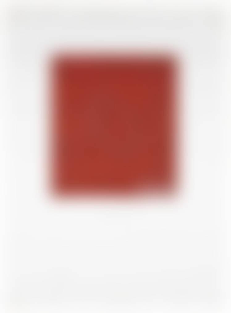 auction-image