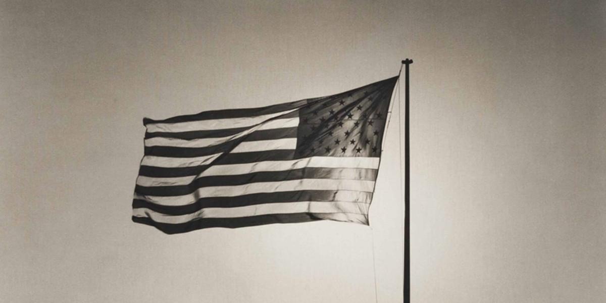 Robert Mapplethorpe - Flag (detail)