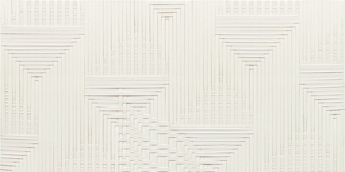 Tauba Auerbach - Slice V (detail)