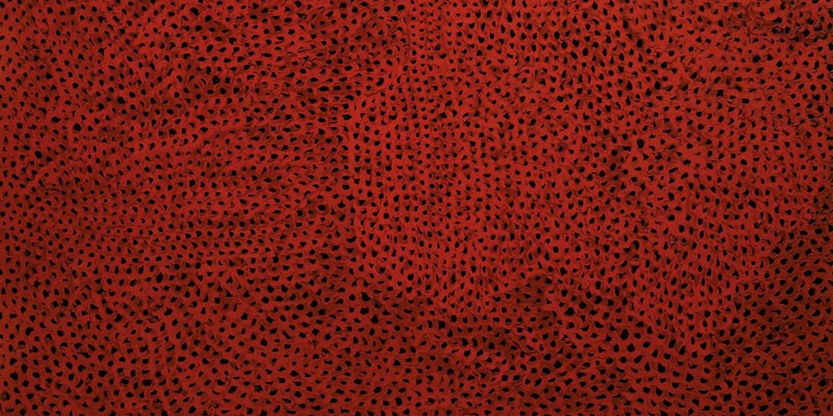 Yayoi Kusama - Untitled, 1960 (Detail)