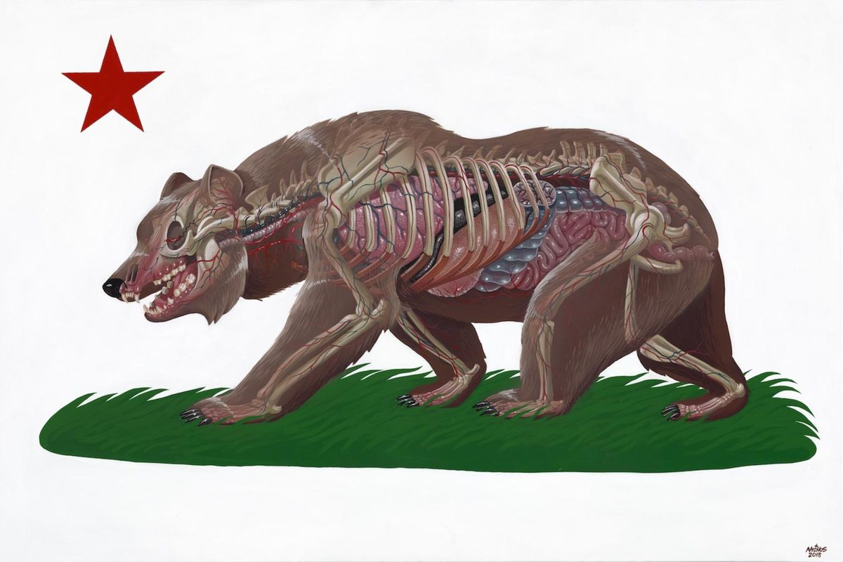Bear Nychos - Translucent California, 2018 f