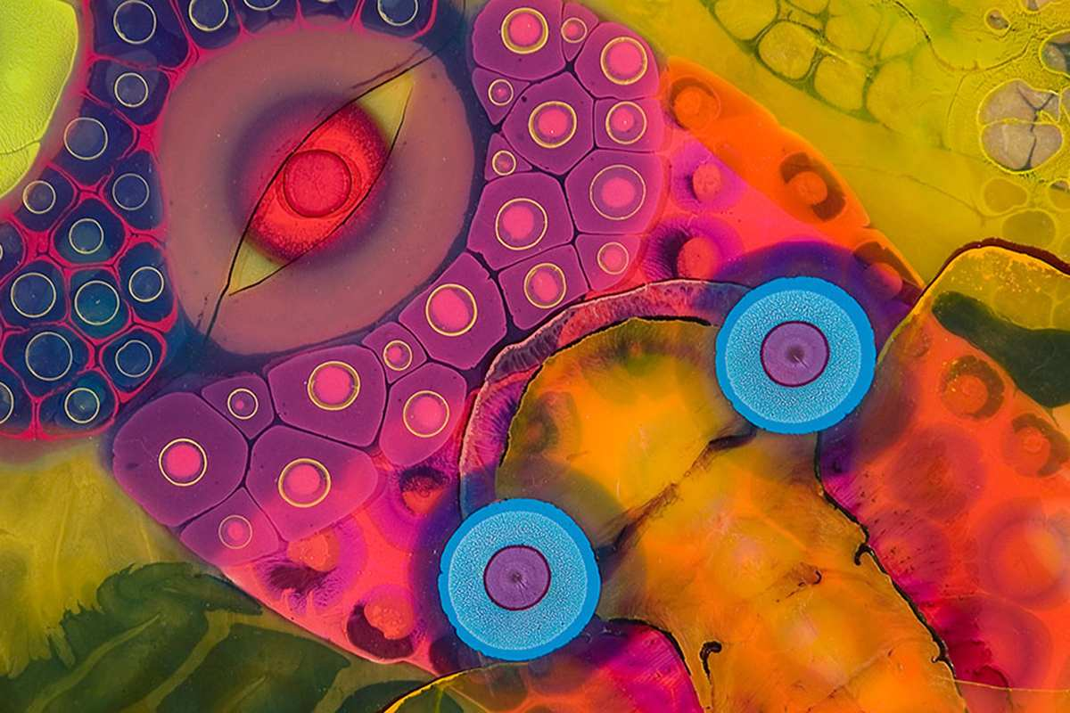 Bruce Riley - Ganesha's detail 14. Courtesy of the artist