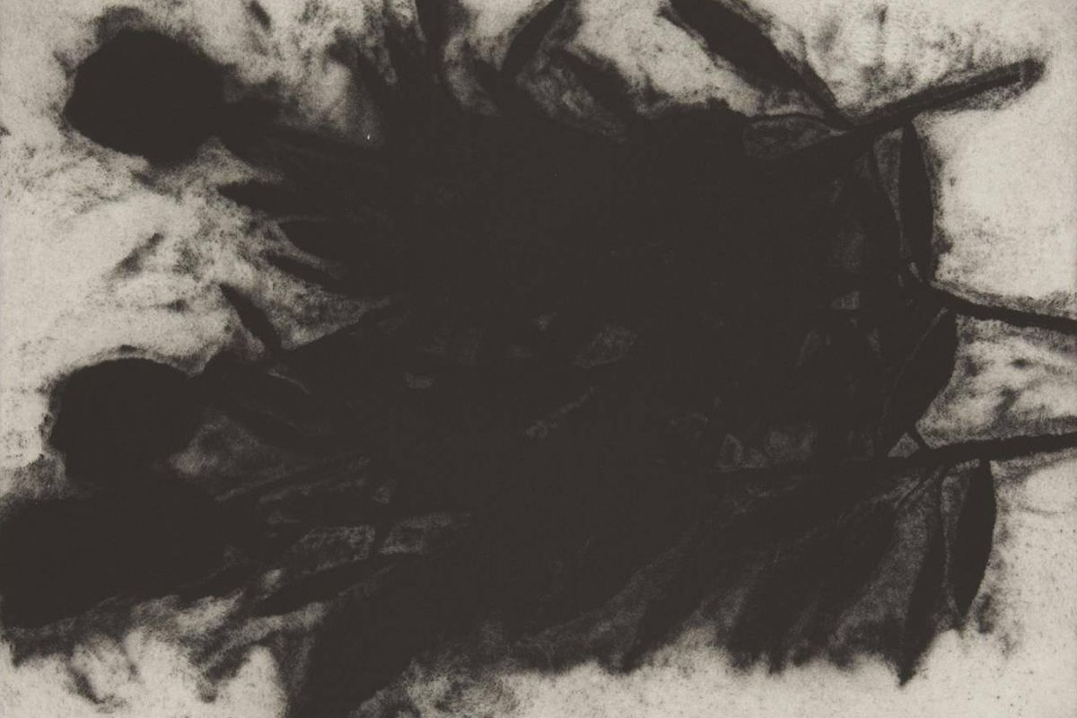 Donald Sultan - Black Rose (1 of 3) (detail), 1989