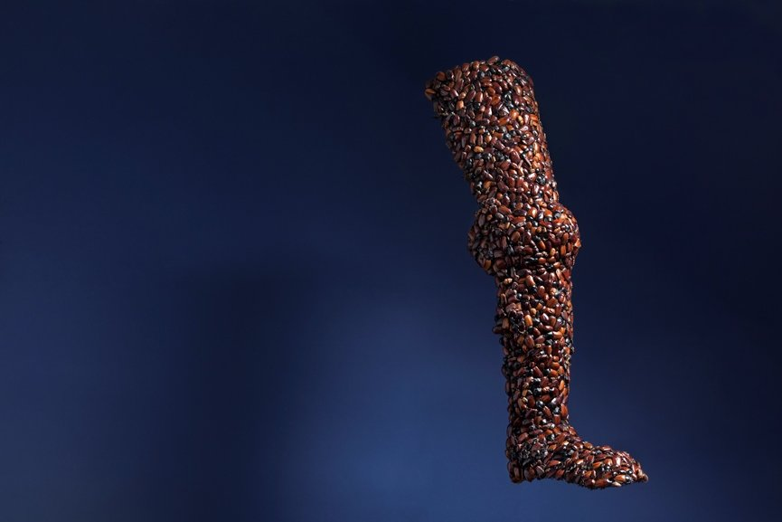 Jan Fabre - Armour (Leg), 1997, beetles on iron wire, 81 x 29 x 21cm. Photo Claudio Abate, courtesy the artist and Ronchini Gallery