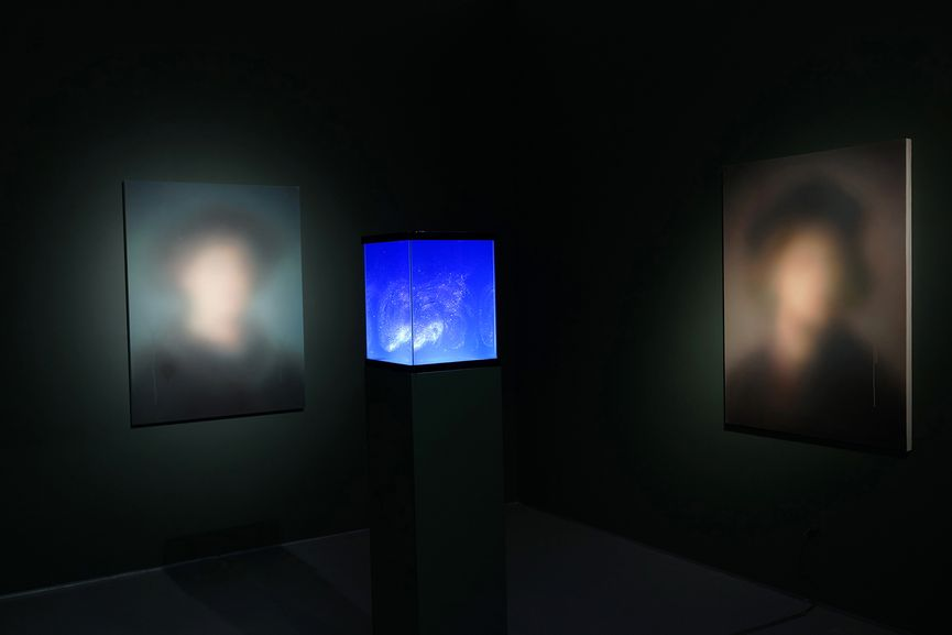 Miaz Brothers - Installation view in Los Angeles, 2014