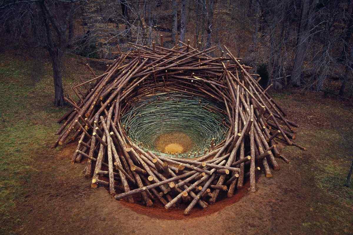 Nils-Udo - Clemson Clay Nest, 2005, via grrlandog tumblr