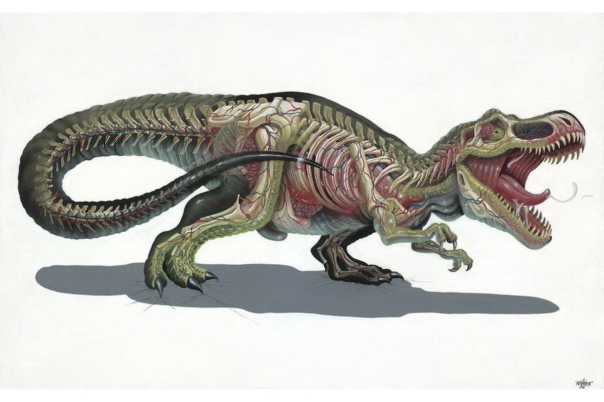Nychos - Translucent Rex